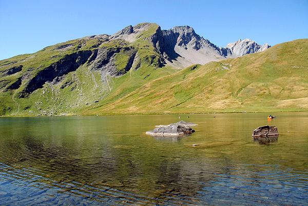 Il lago verney - Tappeto di giunchi ...